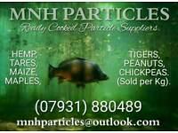Carp Particle Bait