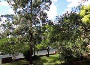Westmead 2BR Apartment close to Rail Station for Rent Westmead Parramatta Area Preview