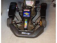 Rotax 100cc kart (125cc, max, direct drive, pro kart, go kart)