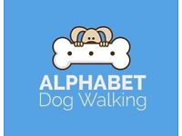 Flexible dog walker - dog walking, day care service, Wimbledon and surrounding areas