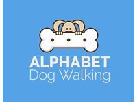 Flexible dog walker - dog walking, day care service, Southfields and surrounding areas