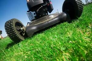Lawn Mowing and Maintenance Quakers Hill Blacktown Area Preview