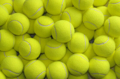 15 Used Tennis Balls For Dogs Toy Ball