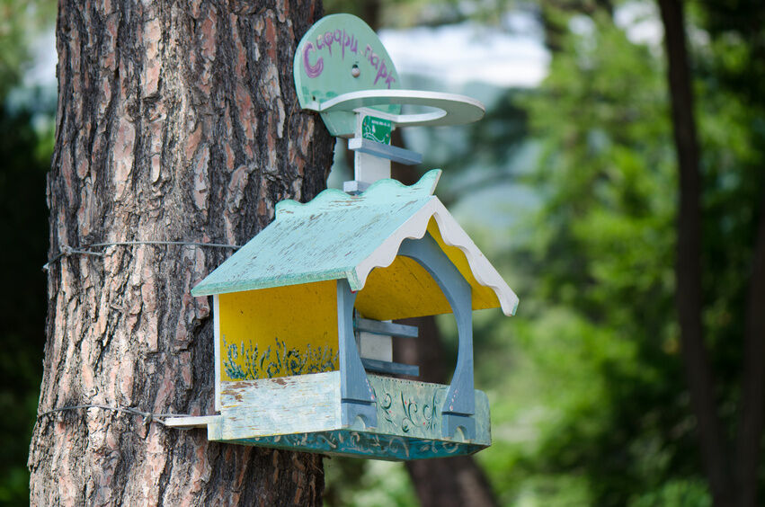 how to make a bird feeder wth plastic egg carton