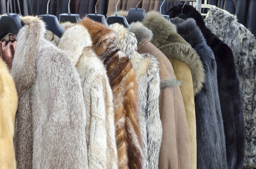 Mink Coat Storage
