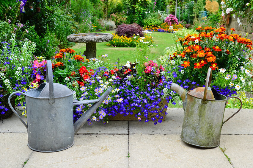 A Guide to Choosing a Watering Can for Your Garden