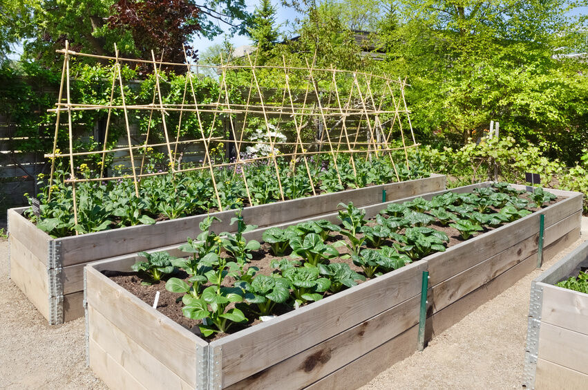 Garden Design: Garden Design With How To Make Raised Beds For A