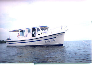 Want to Buy ROSBOROUGH  RF 246      2008 and up