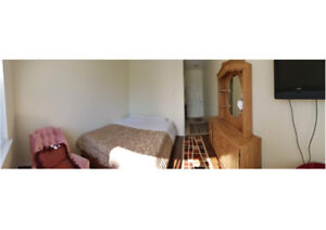 $1000 1bdr Room and Board 50+