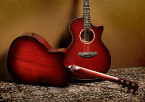 Taylor Custom Acoustic Electric