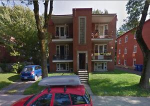 appartement 4 1/2  sur la rue des bouleaux est