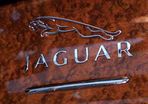 Jaguar Chrome Car Metal Decal,Emblem 60mm XKE,Mk2,XK120,XJ8,XK8,F-Pace,XF,S-Type