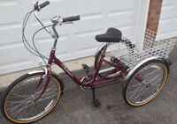 Adult Norco Parklane 6 speed Tricycle
