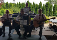 Accordion , guitar and mandolin music for your special occasion