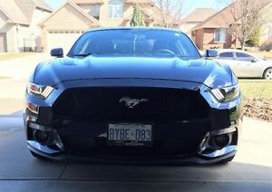 "2015 Ford Mustang GT 5.0 Premium Coupe  ""SUMMER DRIVEN ONLY"""