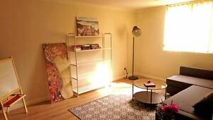FEMALE ONLY FLAT/15 MIN FROM TOWNHALL/FRIENDLY AND QUIET Sydney City Inner Sydney Preview