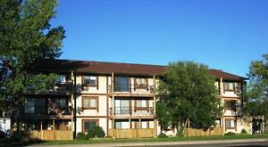 1 Bdrm Apt. available IMMEDIATELY - Close to Yellowhead Trail!