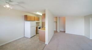 1 bedroom special! In Walking Distance to Southgate Mall... Edmonton Edmonton Area image 11