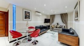 SUPER LUXURY 2 BEDROOM FLAT - MARBLE ARCH - WITH PORTER!