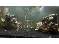 XLarge aquarium fish tank ship