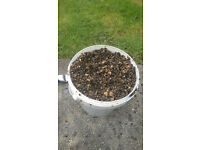 1kg buckets of chilli/natural hemp