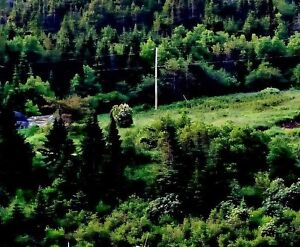 Lot for sale in St. Jones Within Trinity Bay