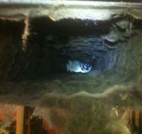 EDMONTON AND AREA WHOLE HOUSE FURNACE CLEANING  UNLIMITED VENTS