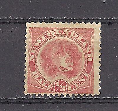 NEWFOUNDLAND , 1896 ,  # 57 1/2c , STAMP , PERF , MINT/NG