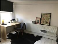 Two large cow hide rugs