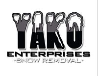 Small-medium commerial and residential snow removal
