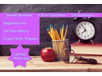 Expert Help-Essay,Assignment,Coursework,Dissertation,SPSS, Programming,IT, Nursing, Engineering, HND