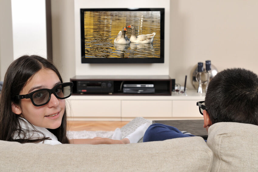 e65016b3be How-to-Use-RealD-3D-Glasses-at-Home-