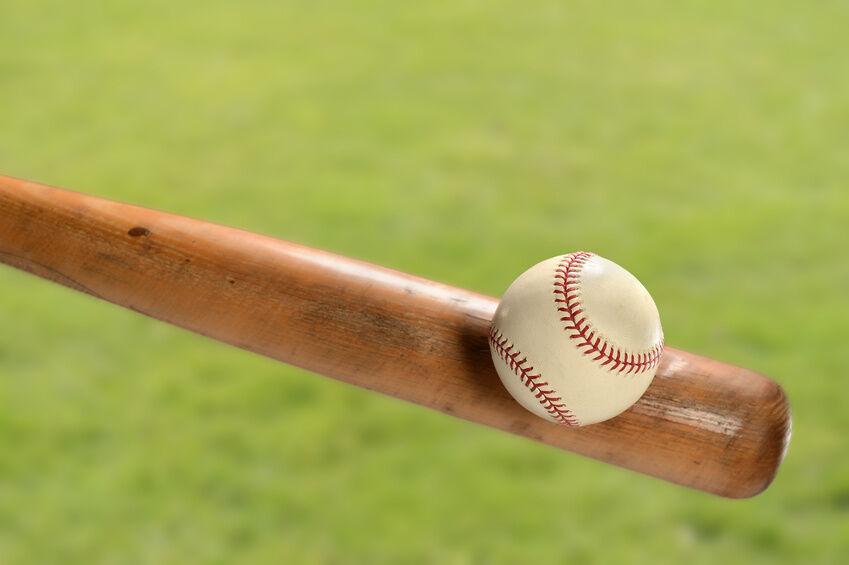 Top 10 Wooden Baseball Bats Ebay