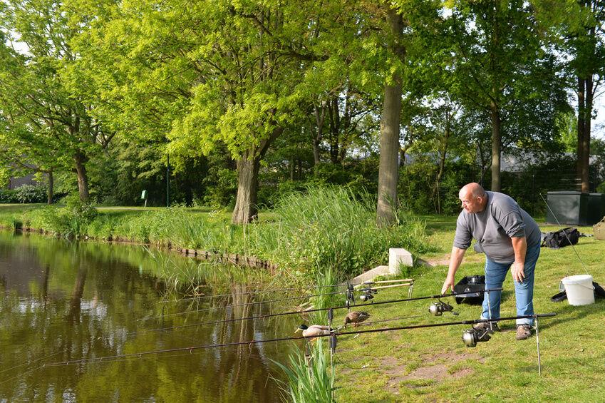 Tipps für Sportangler: Karpfen angeln mit Erfolg