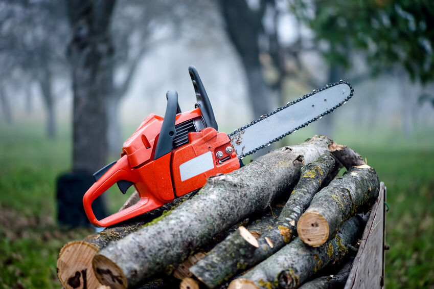 5 Tips on Buying a Chainsaw