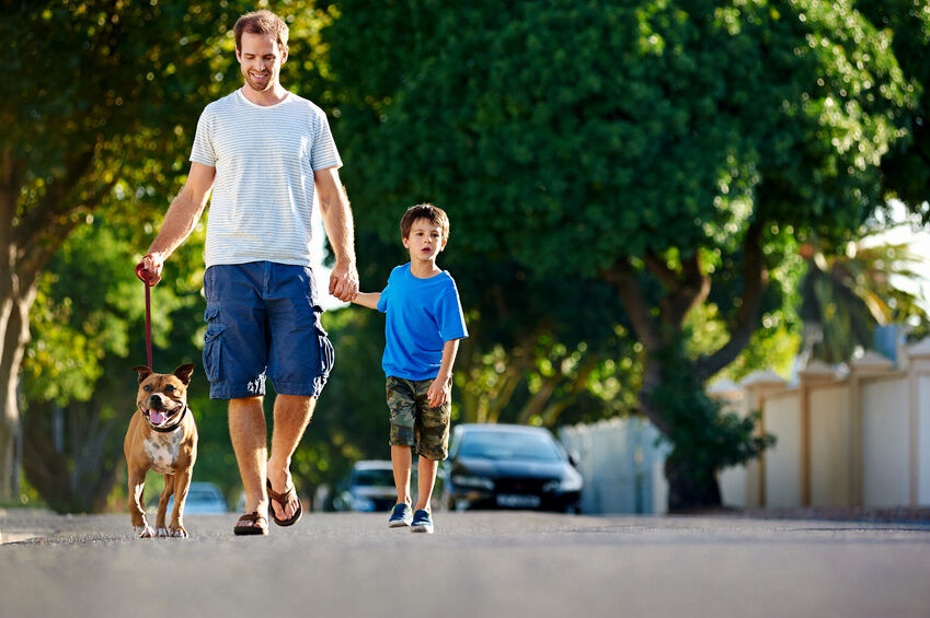 Your Guide to Buying Dog Leads