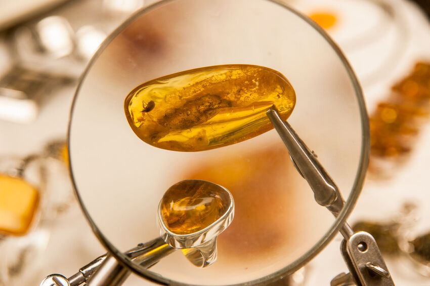 How to Tell Real Baltic Amber from Fake