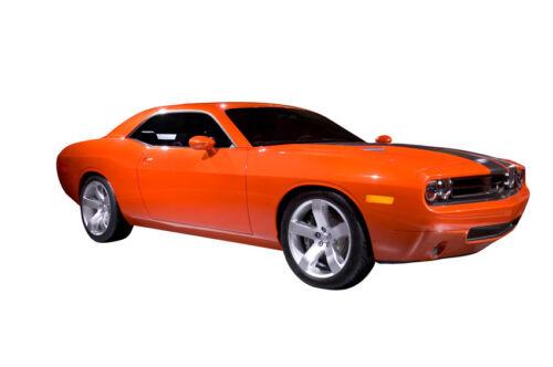 eBay-Ratgeber: Dodge