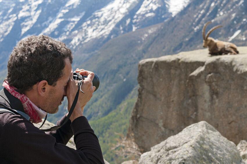 Die Canon-EF-Objektive für Tier und Sportaufnahmen im Vergleich