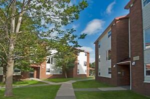 Lovely, spacious apartment in a Senior Friendly building! St. John's Newfoundland image 8