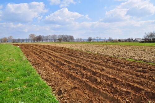 Ratgeber Grundstückskauf: Was es beim Notarvertrag zu beachten gilt