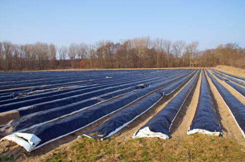 Ratgeber für den Kauf von Folien und Planen für Landwirtschaft und Gartenbau