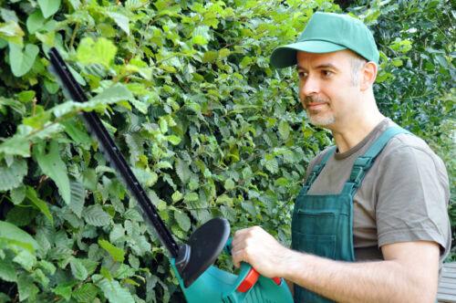 Tipps für die richtige Kleidung bei der Gartenarbeit