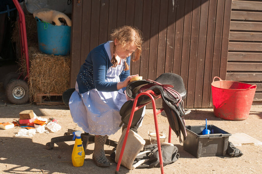 How to Clean a Saddle and Bridle