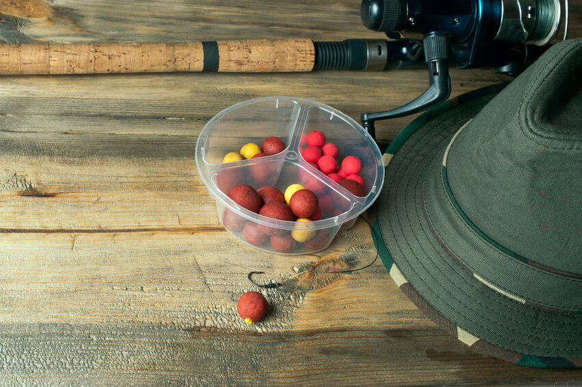 How to Determine the Best Gear for Storing Carp Bait