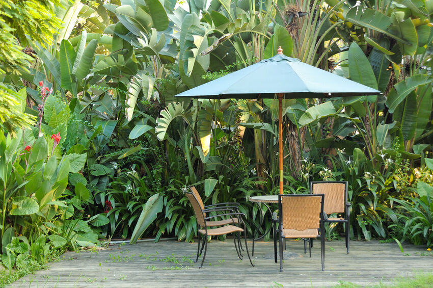 Lovely Patio Table Umbrellas