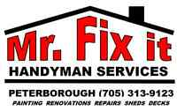 MR FIX IT HANDYMAN SERVICES