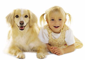 DOG AND PUPPY TRAINING - THE SIMPLE, EFFECTIVE & CARING WAY