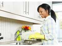 Jobs domestic cleaner required