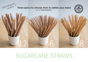 Sugarcane straws! plastic-free! We are looking for partner now.